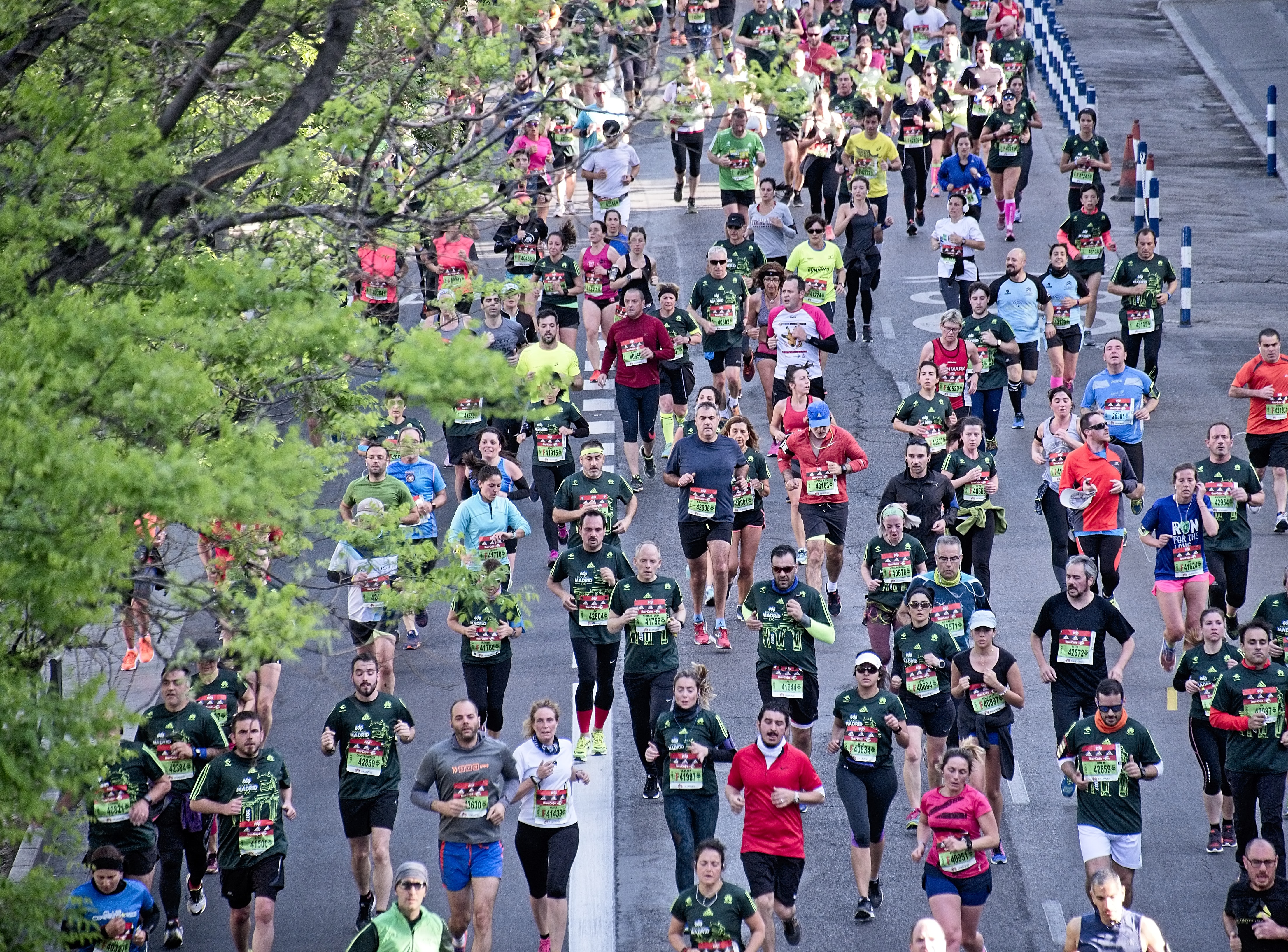 Image of Quzhou Marathon sets off with 12,000 competitors
